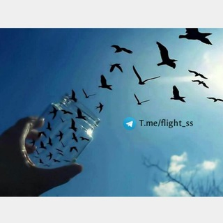 °•In wish of flight•°
